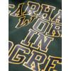 Felpa Carhartt Hooded Wip Division da uomo donna verde