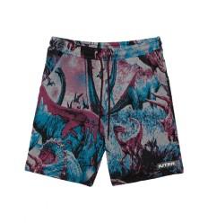 Bermuda Iuter Dinodreams shorts da uomo multicolore