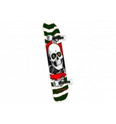 Skate Completo Powell Peralta Ripper One Off Birch Green 7.0